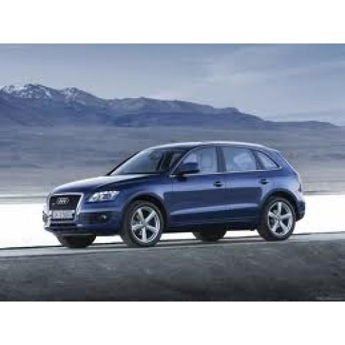 Audi Q5 2009 T/m 2012 (uitvoering Met Kunststof Deurpanelen